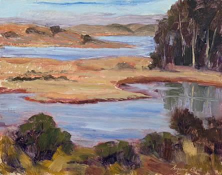 Elkhorn Reflections by Suzanne Elliott