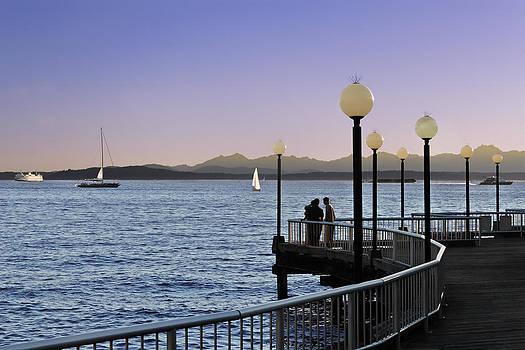 Jo Ann Snover - Elliott Bay at dusk