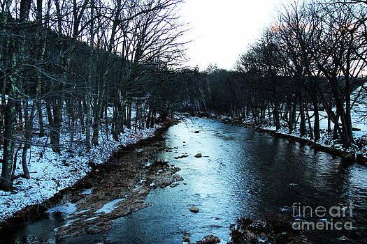 Ellis River Chocorua NH by Ellen Ryan