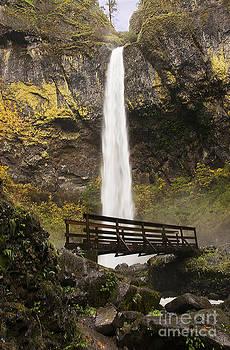 Vivian Christopher - Elowah Falls Columbia River Gorge Oregon