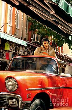 Elvis in Turkey  by Bener Kavukcuoglu