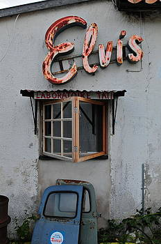 Elvis lives by Eliot Freed