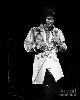 Elvis by Tom Callan