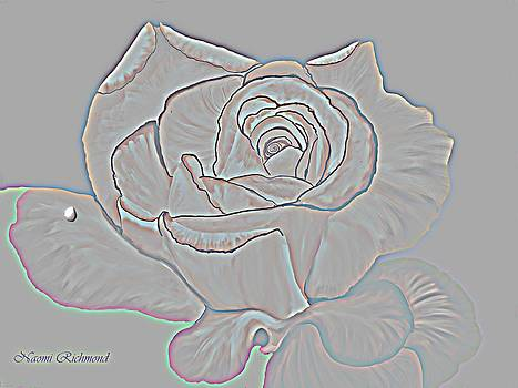 Naomi Richmond - Embossed Rose