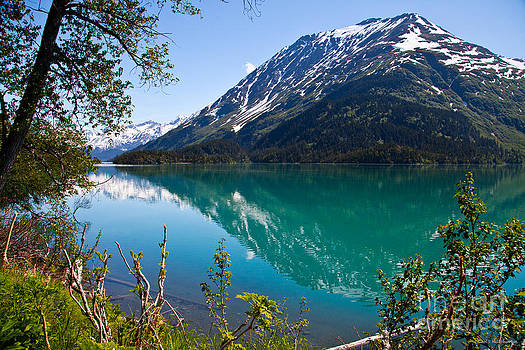 Emerald Reflections  by Chris Heitstuman