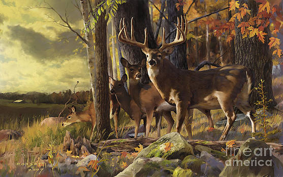 Eminence at the Forest edge by Rob Corsetti