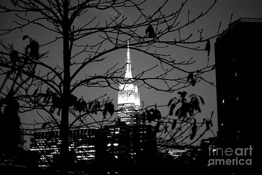 Empire State Building Black and White by Parker O'Donnell
