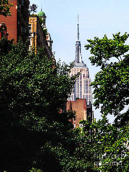 Empire State Building from Downtown NYC by Anne Ferguson