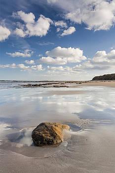David Taylor - Empty Beach