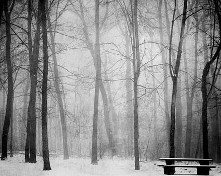 Empty Bench by Sharon Kalstek-Coty