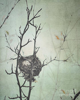 Empty Nest by Sharon Coty