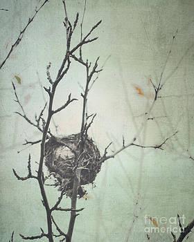 Empty Nest by Sharon Kalstek-Coty