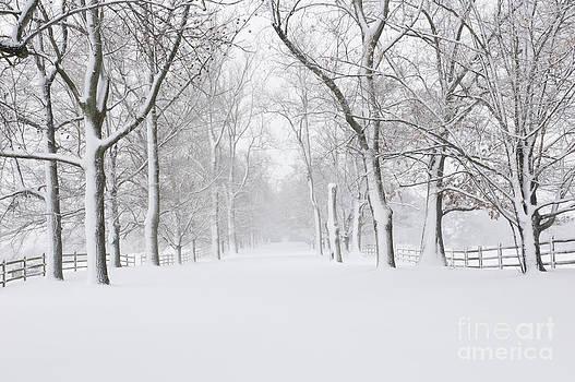 Oscar Gutierrez - Empty snow covered road