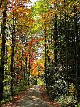 Enchanted Path by Linda Marcille