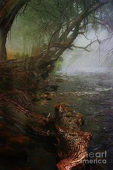 Enchanted river in the mist by Blair Stuart
