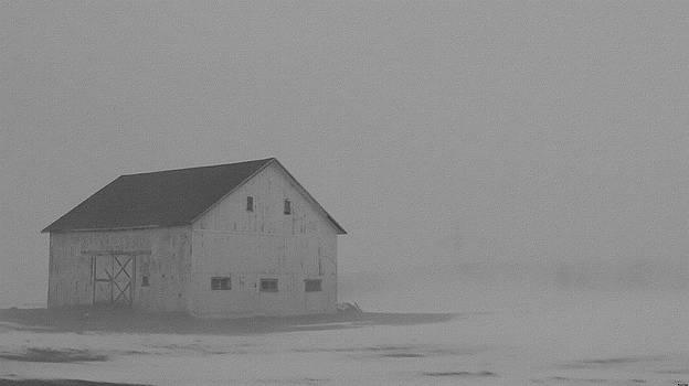 Rosemarie E Seppala - Enclosed In Fog Lonely White Barn