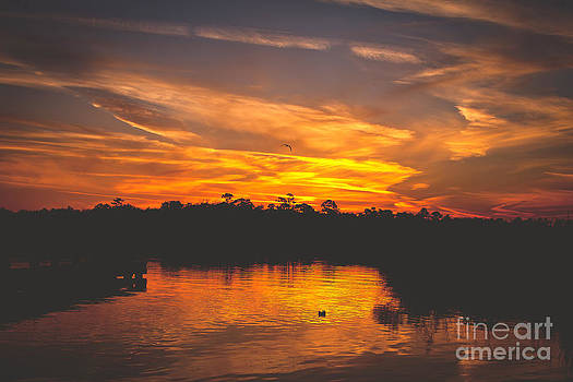 End of Day on the Bayou by Joan McCool