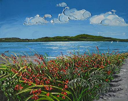 End of the Beach Road Clifden Connemara by Diana Shephard
