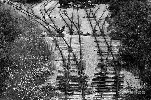 Bill Swartwout Fine Art Photography - End of the Line in Monotone