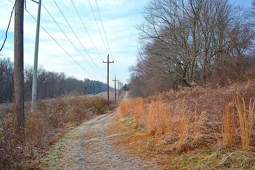Endless Frosty Trail by Tim Toomey