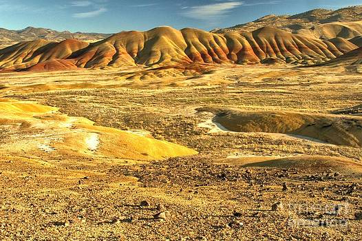 Adam Jewell - Endless Painted Hills