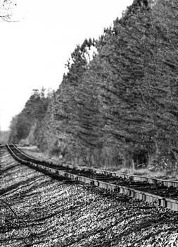 Endless Railroad by Brad Fuller