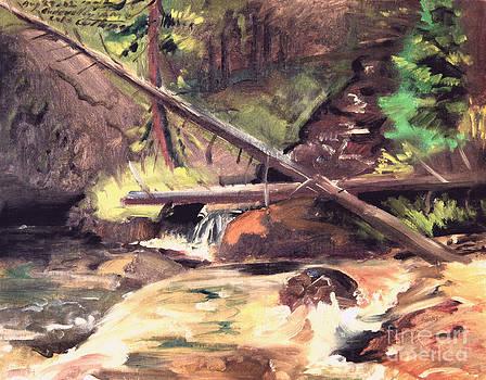 Art By Tolpo Collection - Endo Valley - Colorado