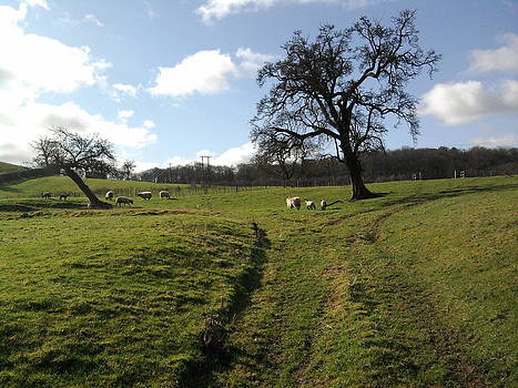 England this green and pleasant land ten by Geoff Cooper