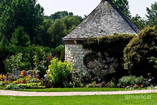Ms Judi - English Cottage Garden