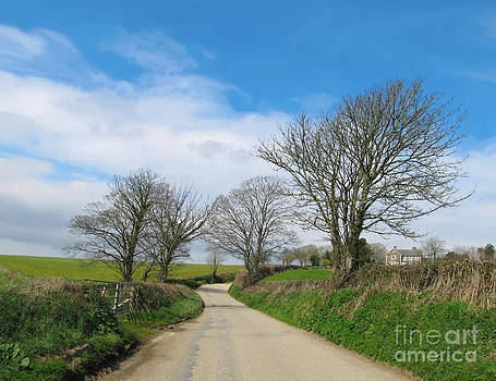 English Country Road in Cornwall by Kiril Stanchev