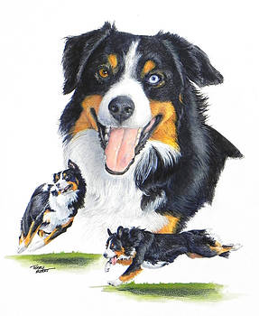 English Shepherd by Terry Albert