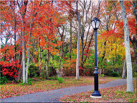 Enjoying Autumn by Mikki Cucuzzo