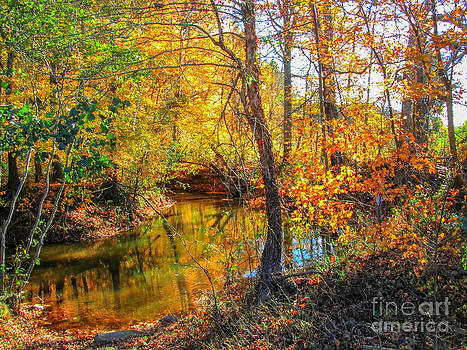 Jaclyn Hughes Fine Art - Enjoying the Autumn Moment
