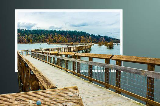 Landscape - Boardwalk - Enter Here by Barry Jones