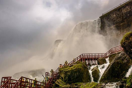 Enter the Mist by Pat Scanlon