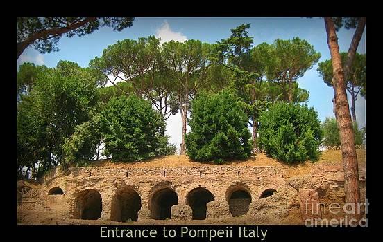 John Malone Halifax Photographer - Entrance to Pompeii