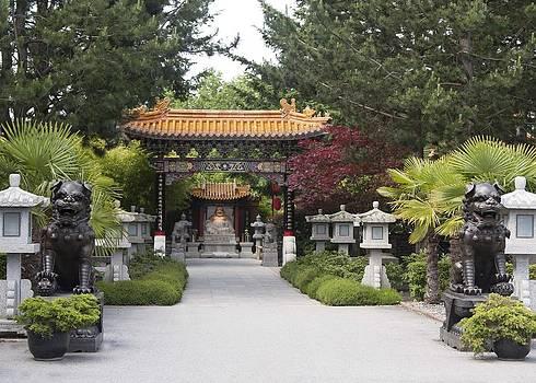 Veronica Vandenburg - Entry to Buddhist Temple