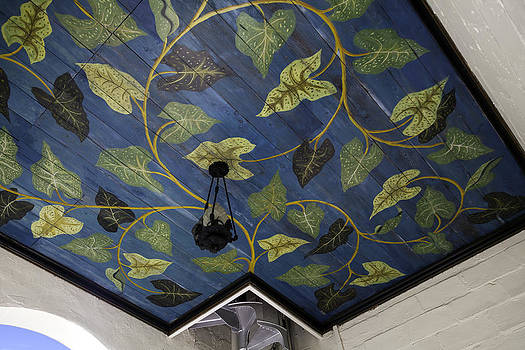 Lynn Palmer - Entwining Vines Ceiling Mural