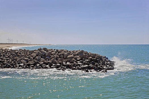 Kantilal Patel - Environment Conscious Dwarka Coastline
