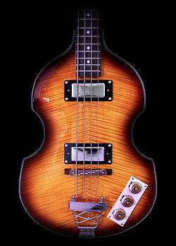 John Cardamone - Epiphone Viola Bass Guitar No Border