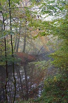 Epping 6 by David  Hawkins