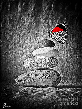 Equilibrium by Binka Kirova