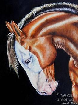 Equine Elegance by Amanda Hukill