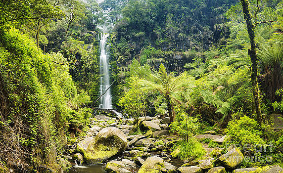 Tim Hester - Erskine Falls Waterfall