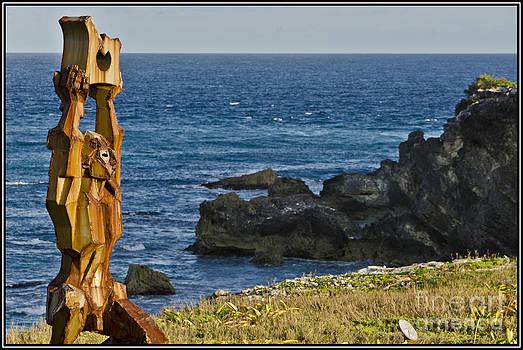 Agus Aldalur - Escultura de madera