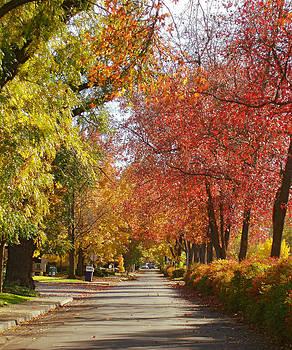 Esplanade in the Fall by Darren  Names