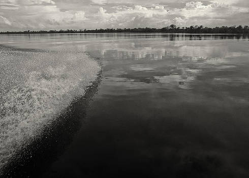 Essequibo Mirror by Jonathan Wilkins