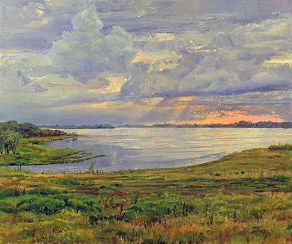 Estuary Polovinka by Galina Gladkaya