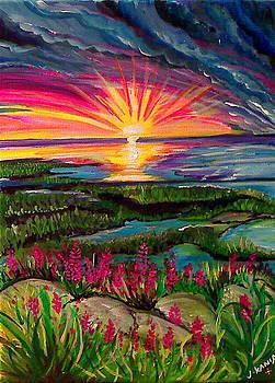 Estuary Sun Set by Jonathan Kania