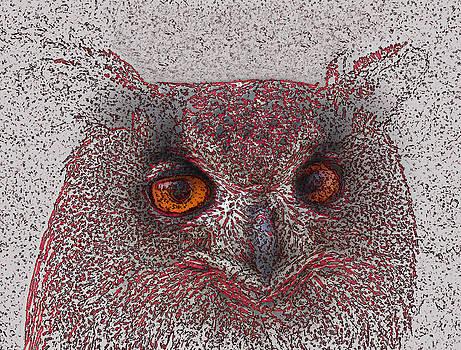 Ethereal Owl by Ricardo  De Almeida